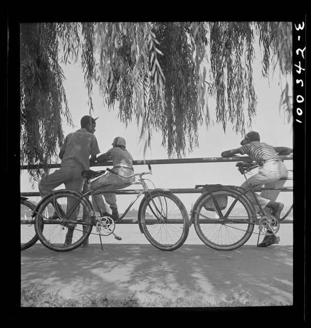 Washington, D.C. Sunday cyclists watching sailboats at Haines Point [i.e. Hains Point]