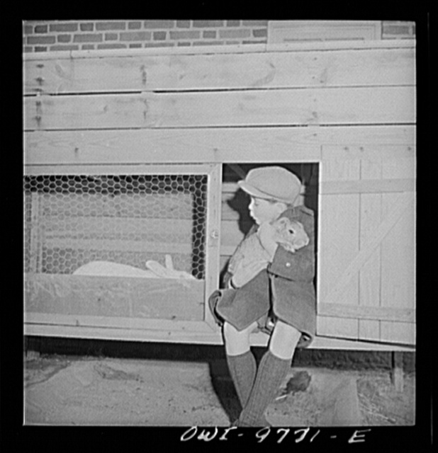 Washington, D.C. The Australian Legation. The son of minister Casey keeps pet rabbits on the legation grounds
