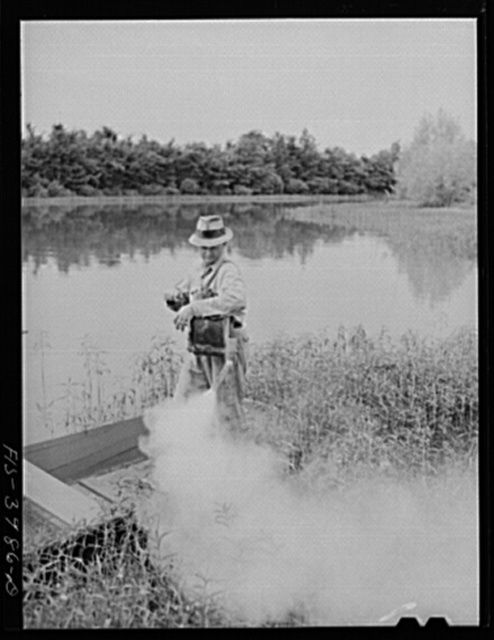 Wilson Dam, Alabama (Tennessee Valley Authority (TVA)). Spraying insecticide along banks of Tennessee River for malaria control