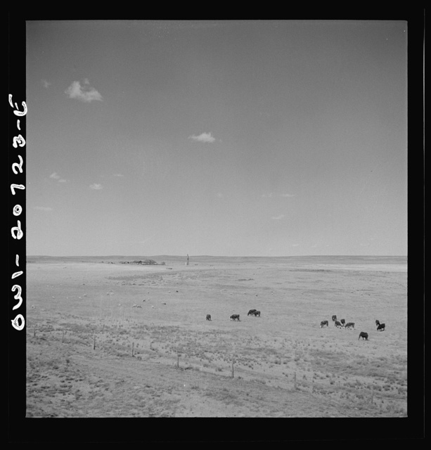 Encino, New Mexico. Sheep and cattle ranch along the Atchison, Topeka and Sata Fe Railroad between Vaughn and Belen, New Mexico