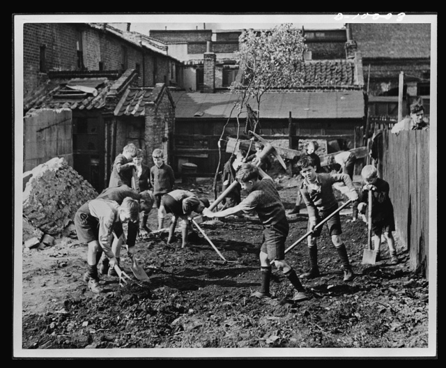 Food in England. Boys' club members clear away the debris from a bombed area in England prepare the land for vegetable gardening. Many bombed areas have been cleared and turned into allotment or community gardens
