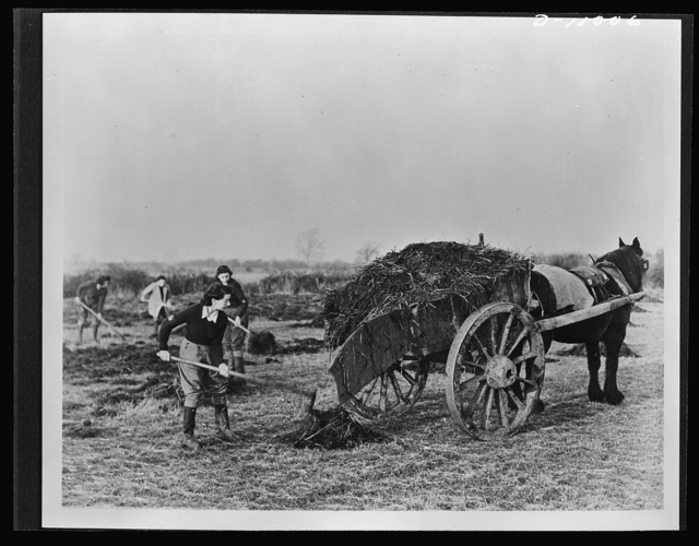 Food in England. Women in Britain's Land Army help to maintain the fertility of British soil in preparation for crops. These volunteers come from every walk of life