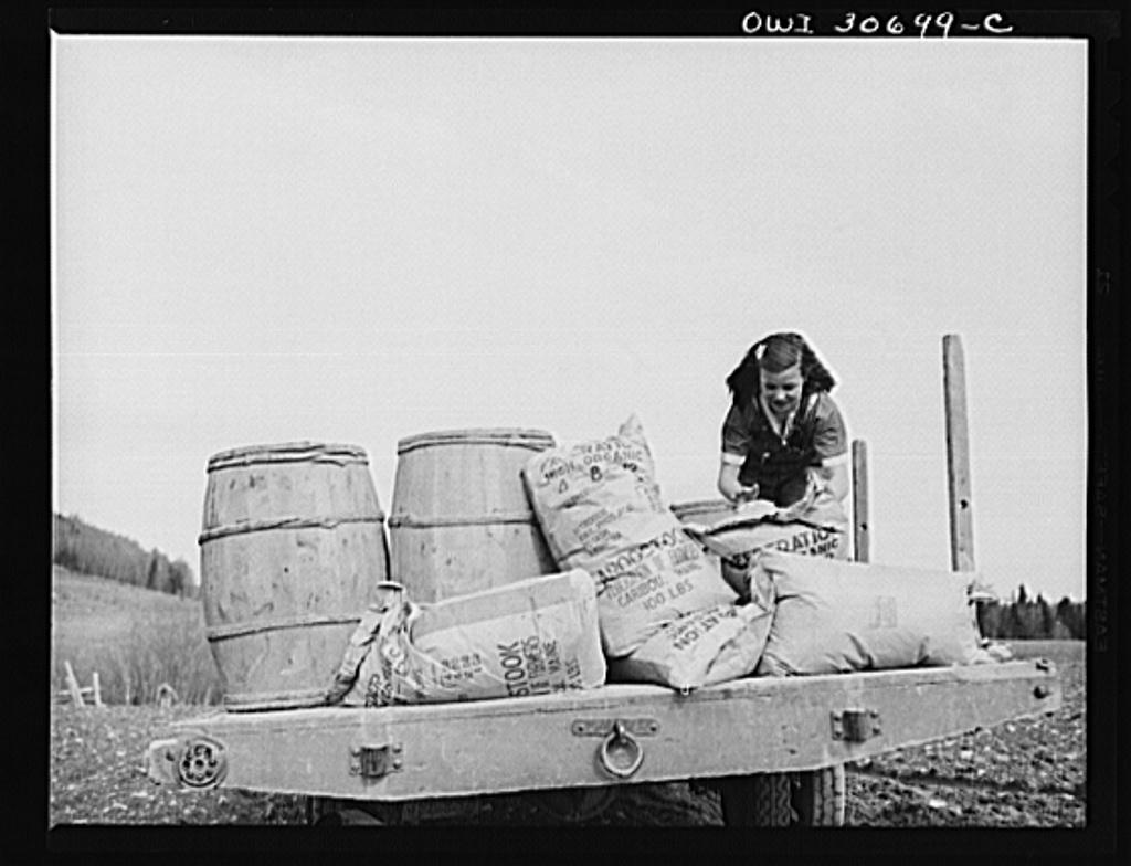 Fort Kent, Aroostook County, Maine  Spring potato planting