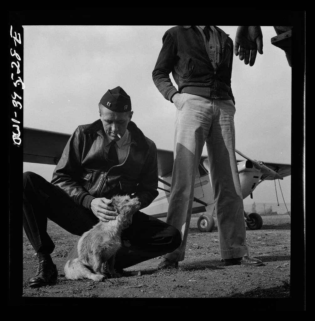 Frederick, Maryland. A student pilot removing burrs from Greaseball, a mascot at the Stevens Airport