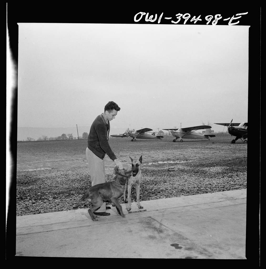 Frederick, Maryland. Walter Spangenberg, a student at Woodrow Wilson High School, and two of the mascots at the airfield where he takes flying lessons