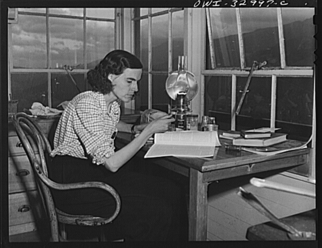 Gorham (vicinity), New Hampshire. Reading matter, and the companionship of her Great Dane, Brenda, are the only things to dispel the loneliness of the evenings in the tower for Barbara Mortensen, a fire and airplane lookout on Pine Mountain
