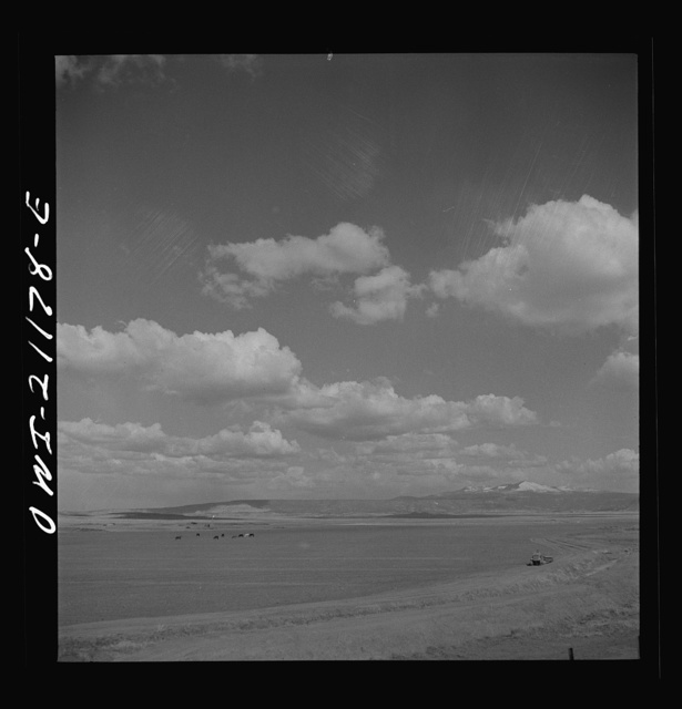 Grants, New Mexico. Cultivated fields along the Atchison, Topeka and Santa Fe Railroad between Belen and Gallup, New Mexico. This land, farmed by Mormons, shipped over a thousand carloads of carrots, lettuce, peas, etc., last year