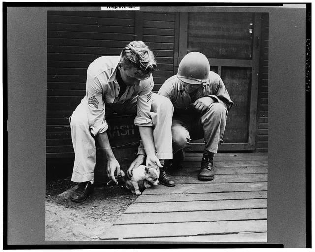 Greenville, South Carolina. Air Service Command. Enlisted men of the 25th service group playing with a puppy