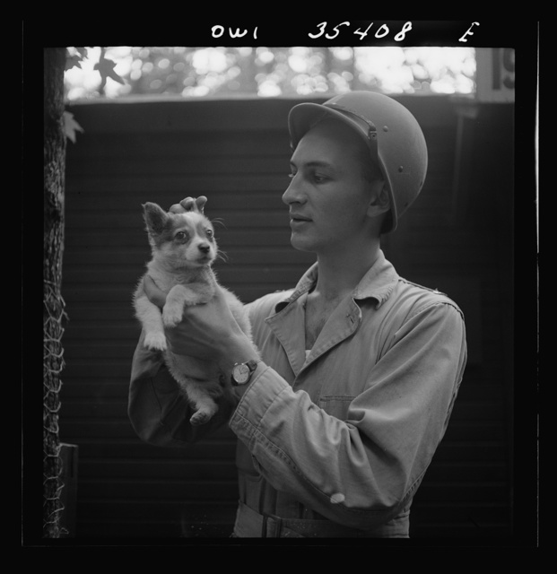 Greenville, South Carolina. Air Service Command. Lieutenant Rosen of the Quartermaster Truck Company, 25th service group, with a pet puppy