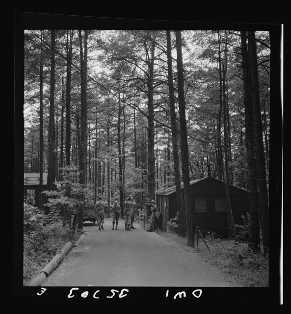 Greenville, South Carolina. Air Service Command. Wooded area in which most of the 25th service group is encamped