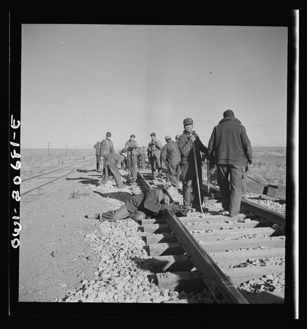 Iden, New Mexico. Section gang raising, surfacing and gauging the track in the Atchison, Topeka and Santa Fe Railroad between Clovis and Vaughn