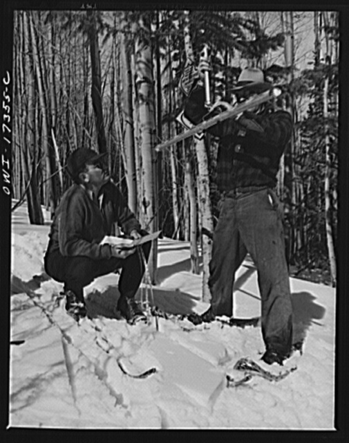 Measuring snow in the Sangre de Cristo Mountains above Penasco, New Mexico
