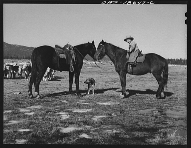 "Moreno Valley, Colfax County, New Mexico. Five-year-old son of William Heck, a second generation cattleman, ""riding herd"" with his father"