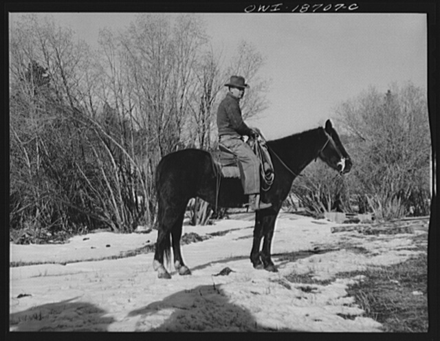 Moreno Valley, Colfax County, New Mexico. William Heck, a cattleman