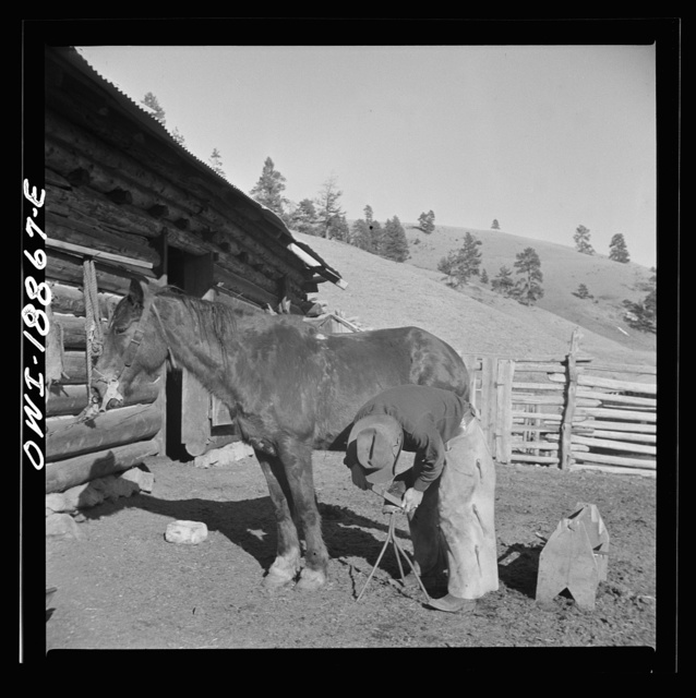 Moreno Valley, Colfax County, New Mexico. William Heck trimming his horse's hoof