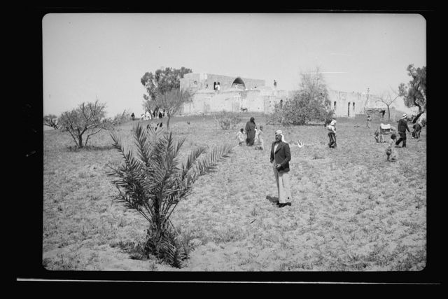 Moslem [i.e., Muslim] celebrations at Mejdal (Wady Nemill and Sey'd Hussein Shrine at Ascalon) and at Gaza (el Muntar) April 20th, 21st and 22nd 1943. The Shrine of Seyid Hussein from S.E.