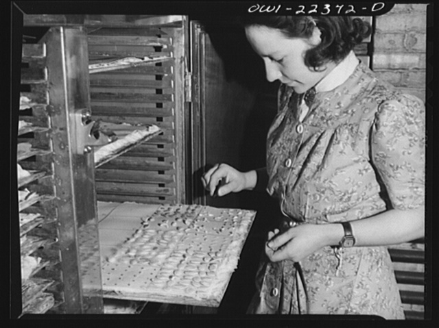 Philadelphia, Pennsylvania. Testing seeds for germinating qualities at the W. Atlee Burpee Company, seed dealers
