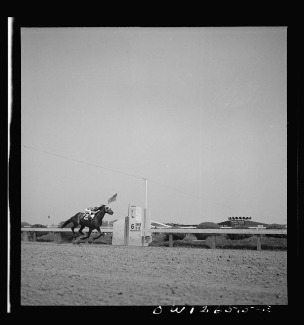 Pimlico racetrack, near Baltimore, Maryland. Count Fleet crossing finishing line to win Preakness Cup