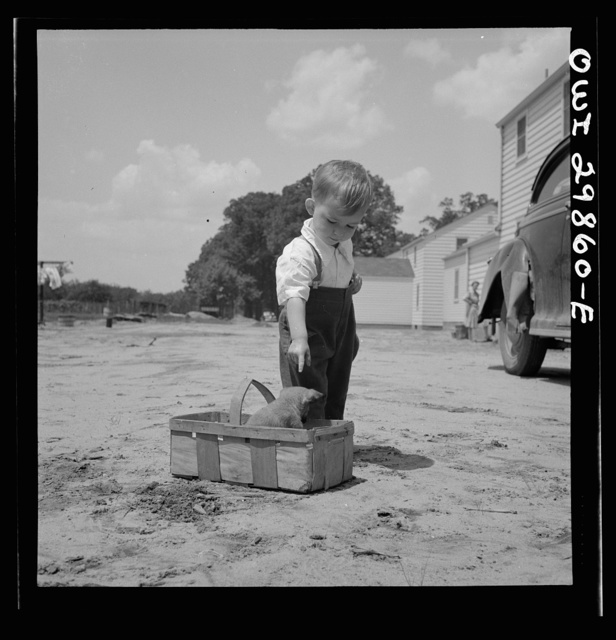 Point Pleasant, West Virginia. A small child with a puppy