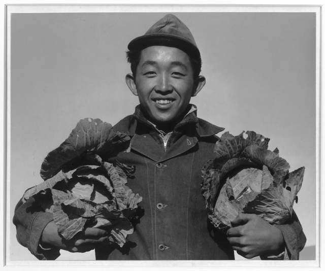 Richard Kobayashi, farmer with cabbages, Manzanar Relocation Center, California / photograph by Ansel Adams.