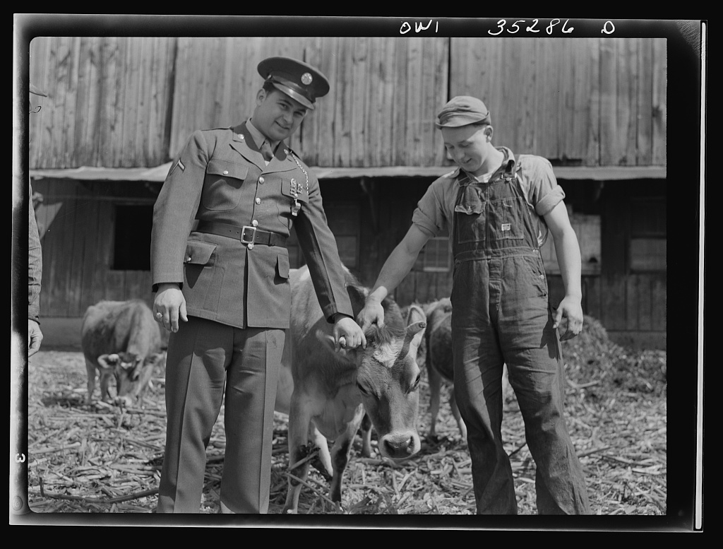 Rockville (vicinity), Maryland. Harvey Horton, visiting the N.C. Stiles dairy farm while on furlough from Fort Belvoir, Virginia, posing with sixteen-year old Charles Stiles and a reluctant cow