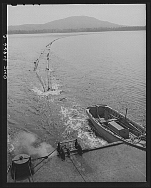 Spring pulpwood drive on the Brown Company timber holdings in Maine. On its return trip up Mooselookmeguntic Lake, the steamer tows an empty boom to be refilled with the next day's load