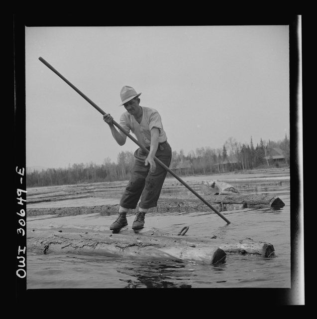 Spring pulpwood drive on the Brown Company timber holdings in Maine. Opening up an empty boom at the upper end of Mooselookmeguntic Lake so it can be filled with more logs from the Kennebago River. Note the spikes on the woodsman's shoes to keep him from slipping on the wet logs