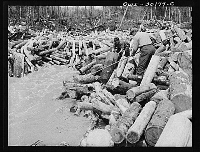 Spring pulpwood drive on the Brown Company timber holdings in Maine. With a pike and by hand, logs are put into the stream to level out the jam in Dennison Bog Brook