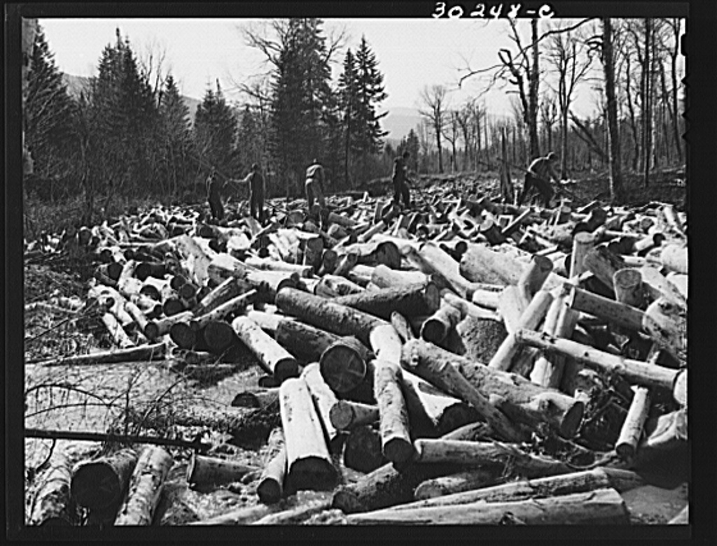Spring pulpwood drive on the Brown Company timber holdings in Maine. Woodsmen with pikes working on a jam which has formed in Dennison Bog Brook