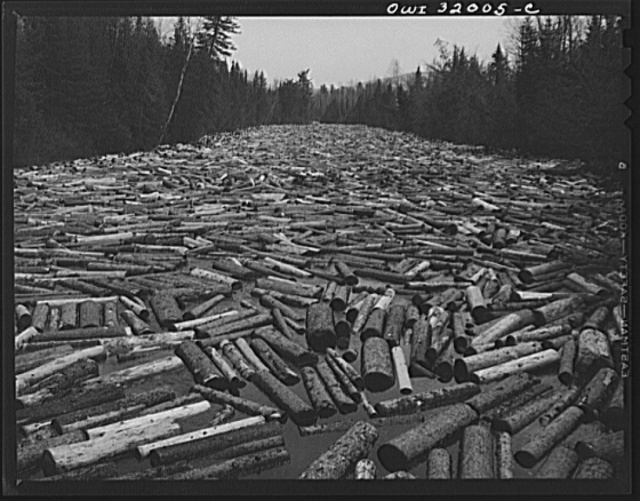 Pulp wood at paper mill  Berlin, New Hampshire | PICRYL