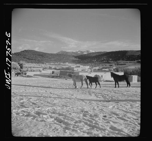 Trampas, New Mexico. A corral