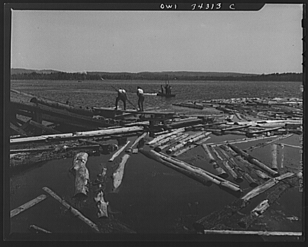 Turkey Pond, near Concord, New Hampshire. Women workers employed by a U.S. Department of Agriculture timber salvage sawmill. Mrs. Elizabeth Esty and Florence Drouin, pond women, use regular logging pikes to bring the logs into place on the slip. The timber sawed at this mill is wood felled by the hurricane which hit New England in September, 1938