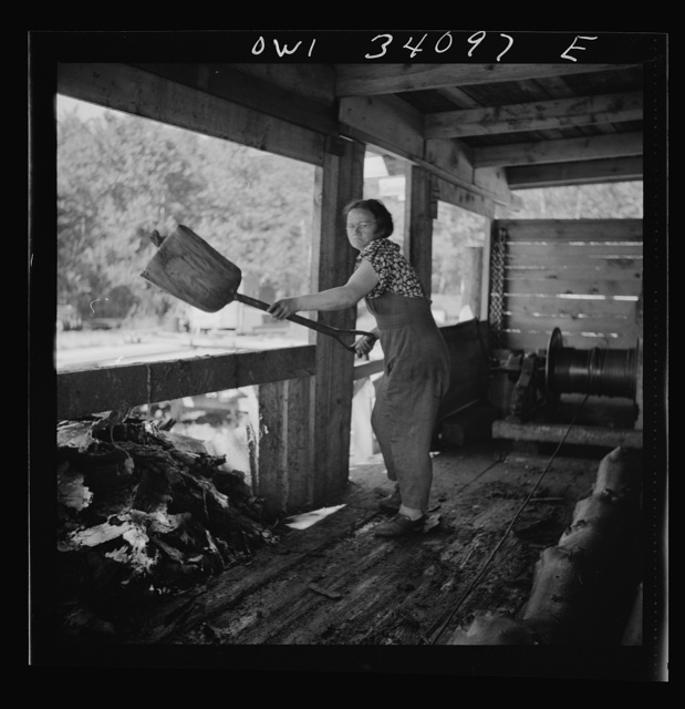 Turkey Pond, near Concord, New Hampshire. Women workers employed by a U.S. Department of Agriculture timber salvage sawmill. Mrs. Dorothy De Greenia, slip woman, shoveling up the slimy bark just peeled off the logs that come up the slip from the pond