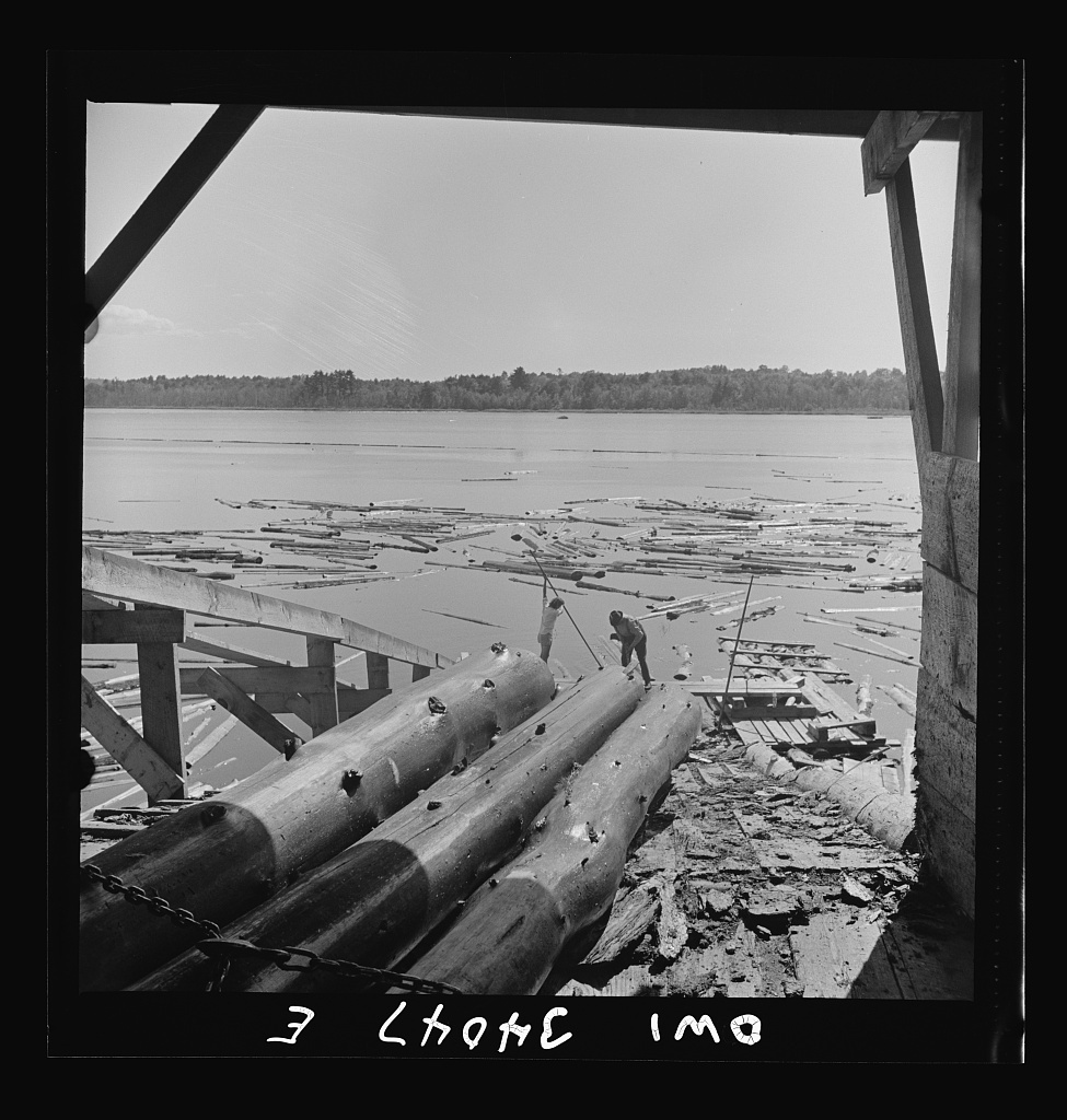 Turkey Pond, near Concord, New Hampshire. Women workers employed by a U.S. Department of Agriculture timber salvage sawmill. Logs are chained together and hauled up the slip by power-driven cable
