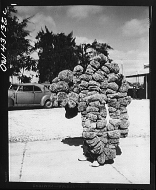 Tarpon Springs, Florida. A Greek-American deep sea sponge fisherman carrying a load of threaded sponges