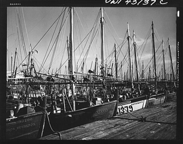 Tarpon Springs, Florida. Fishing boat owned by Greek-American deep sponge fishermen