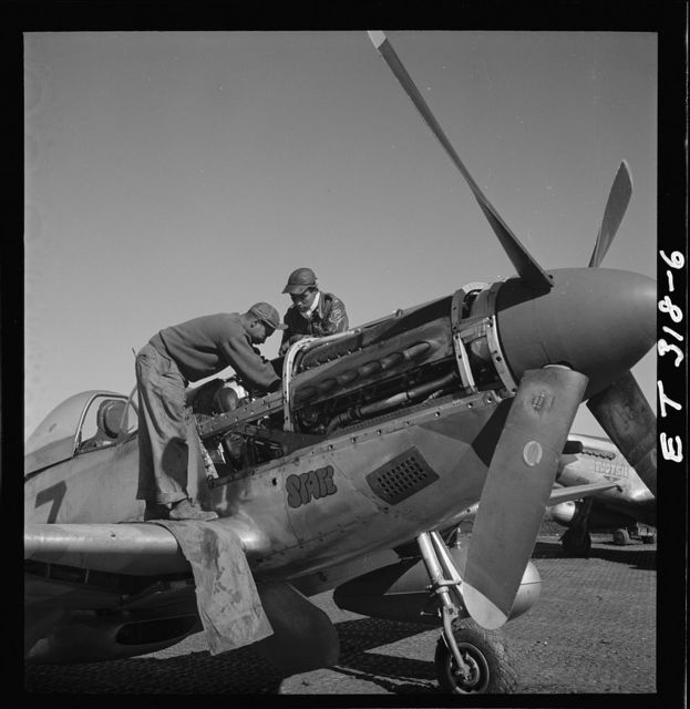 [Tuskegee airmen Marcellus G. Smith and Roscoe C. Brown, Ramitelli, Italy, March 1945]