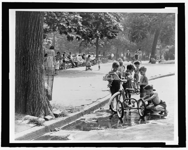 [Children with tricycles stopped at a puddle near a curb in Washington Square, people on benches in midground, trees behind them] / World Telegram & Sun photo by Fred Palumbo.