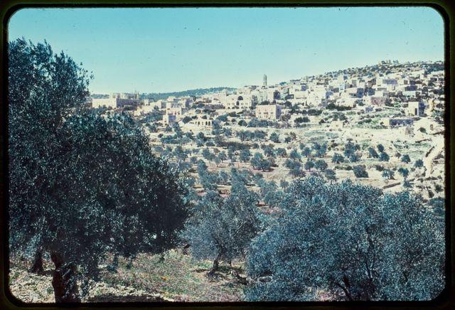 Bethlehem. Beit-Jala, Zelzah, Home of Saul. I Sam 9:10