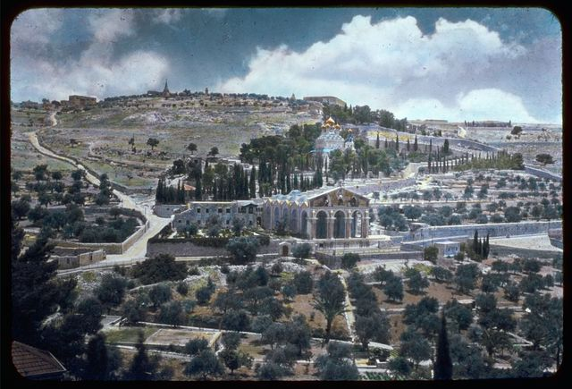 Jerusalem. Garden of Gethsemane and Mt. of Olives from city wall. Matt. 26:36