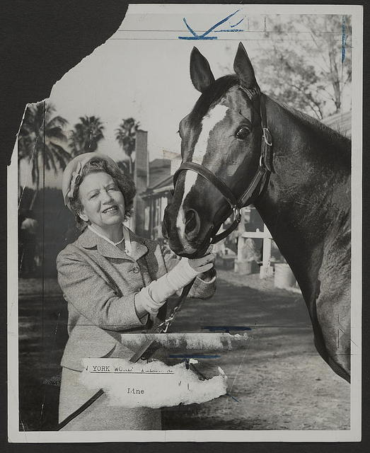 [Businesswoman Elizabeth Graham, (better known as Elizabeth Arden), poses with her race horse, Jewel's Reward] / World Telegram & Sun photo by Bill Greene.