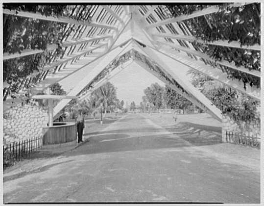 Arawak Hotel, Jamaica, British West Indies. Entrance gate II