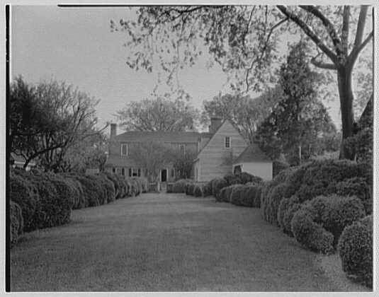 Williamsburg, Virginia, Ludwell-Paradise. Boxwood, to house