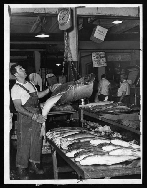 [Man weighing fish on a scoop scale, Fulton Fish Market] / World Telegram & Sun photo by Dick De Marsico.