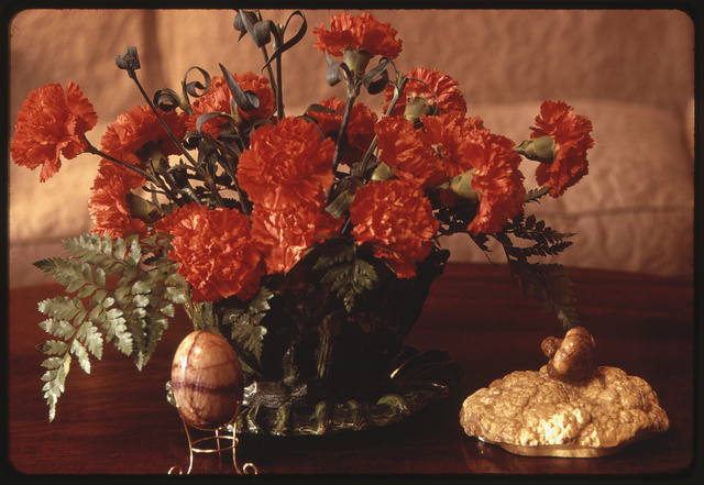 [Carnation flower arrangement on table in the home of Ann Bonfoey Taylor, Denver, Colorado]