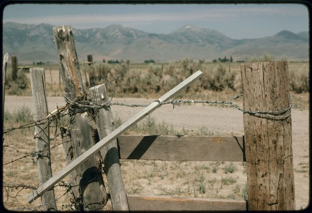 Fence Tightener for Barbed Wire and Wood Fence