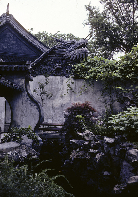 [Exterior garden space with dragon head atop a wall at a temple in Shanghai, China]