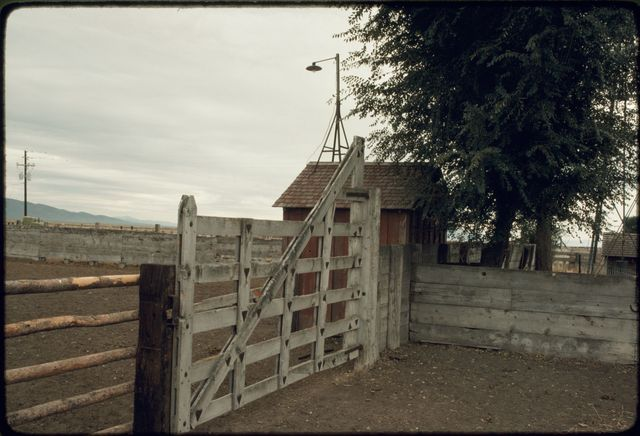 Gate and Fence, 101 Ranch