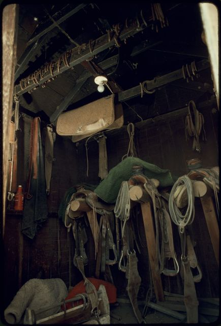 Interior of Saddle Shed