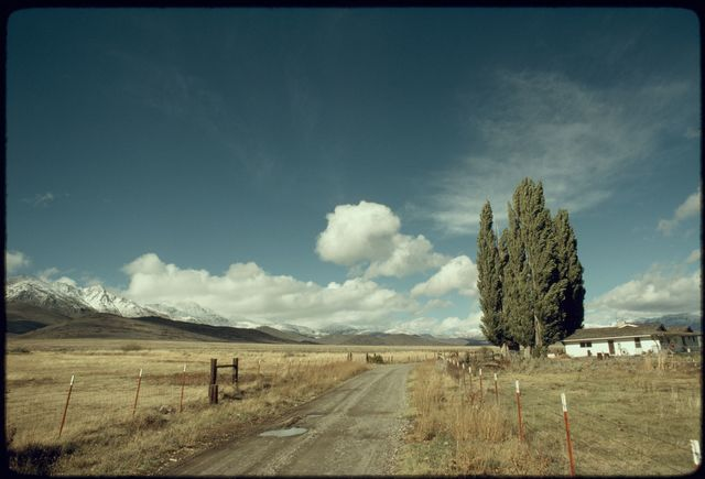 Landscape, Cassinelli Brothers Ranch